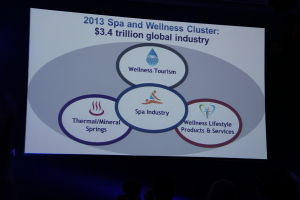 Global Spa Wellness Summit